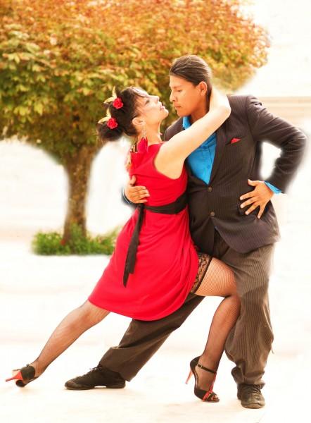Tgv danseuse barbizon partenaire danse for Recherche partenaire de danse de salon